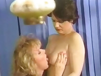 Transsexual neighbour